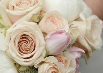 Garden Roses - Camrose Hill Flower Studio & Farm