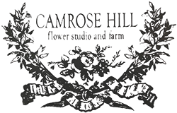 Camrose Hill Flower Studio and Farm